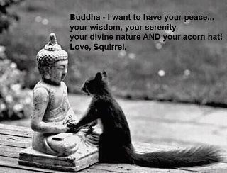 buddhist_squirrel_joke