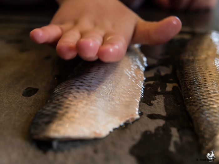 Når fisken er fileteret, så bliver den helt blød at røre ved.