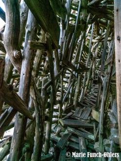 Man er omsluttet af et træskellet, som var man fanget i et forhistorisk dyr, hvor Tiden med sine krogede fingre har pillet alt kød og hud af og slubret det i sig.