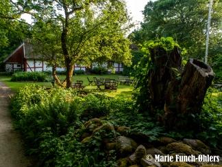 P6073961©Marie Funch-Øhlers